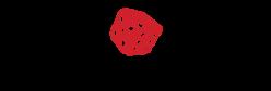 PlayAmo_logo