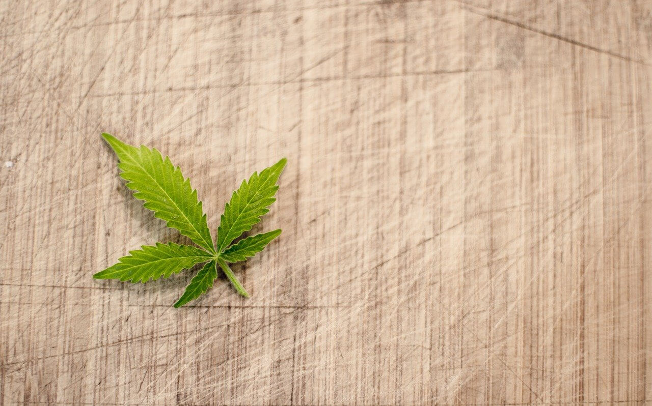 Lehren aus den USA: Cannabis-Legalisierung könnte Deutschland 2,3 Millionen Neu-Konsumenten bescheren