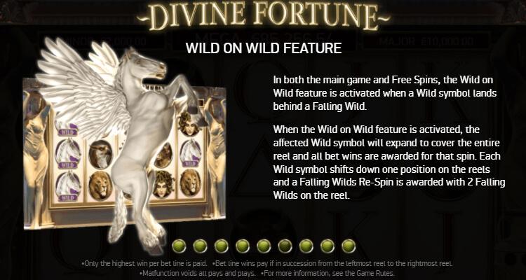 Divine Fortune Wild on Wild